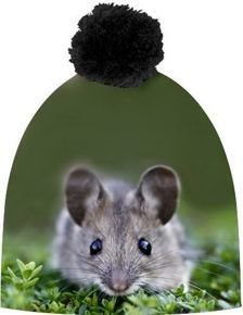 MOUSE GREEN
